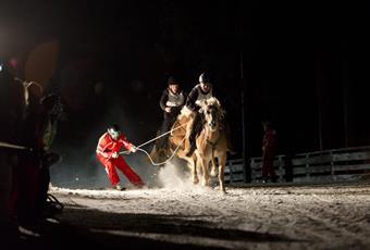 Skikjoring by night at Hafling