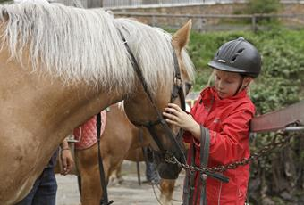 Riding stables and carriage rides
