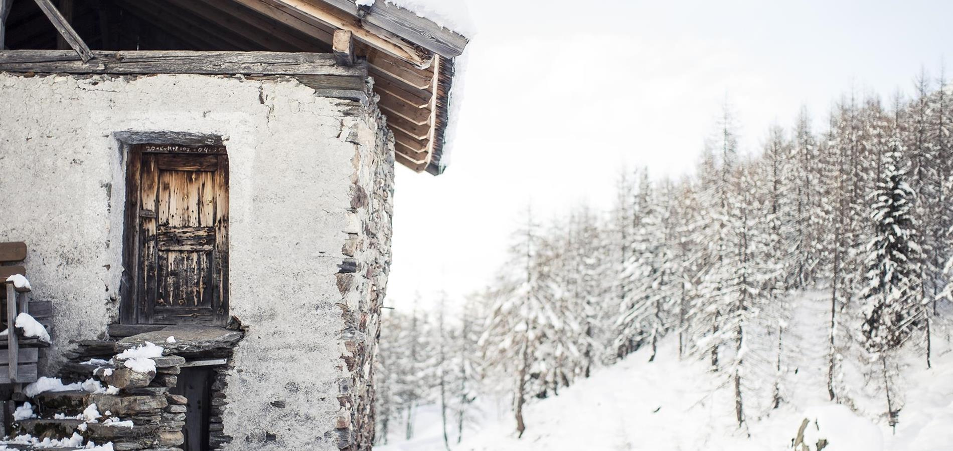 Snow Reports South Tyrol