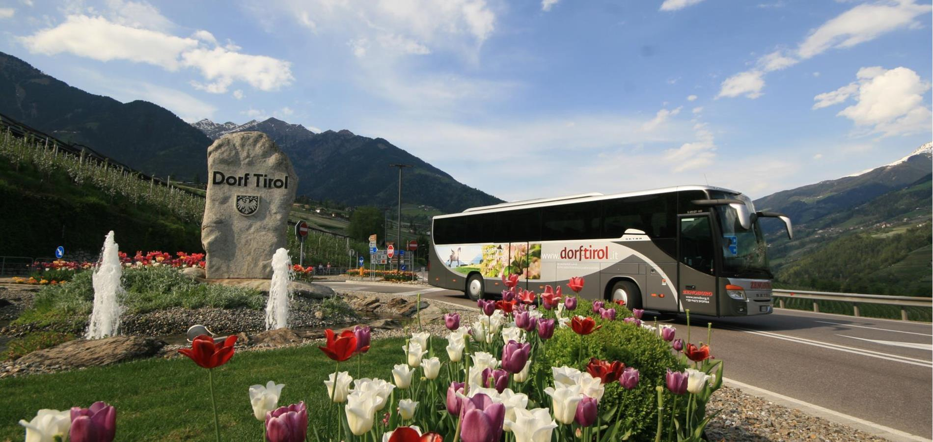 Reach Tirolo by bus