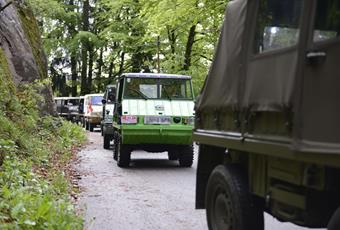 4. Internationales Steyr-Puch Haflingertreffen