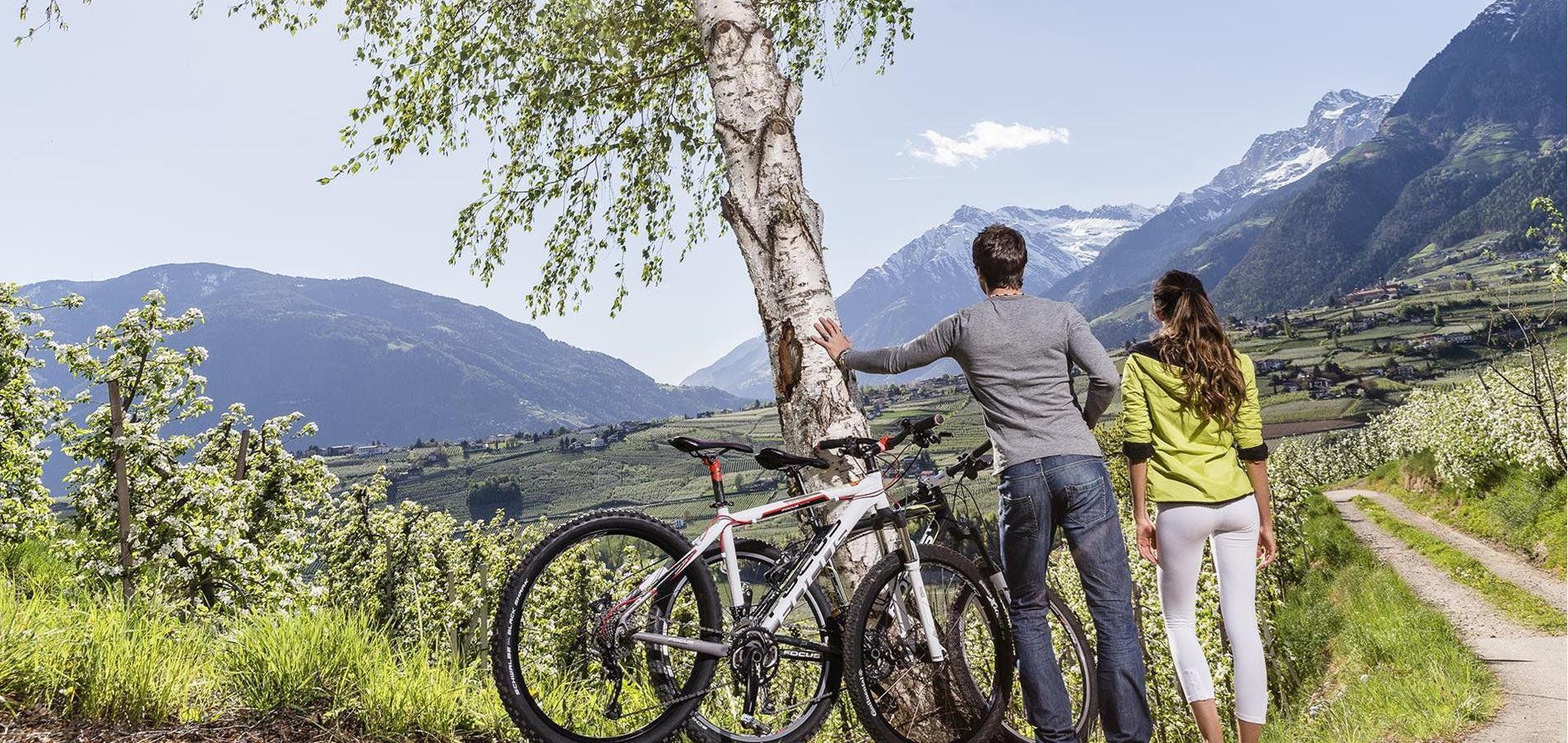 Cycling Paths in South Tyrol