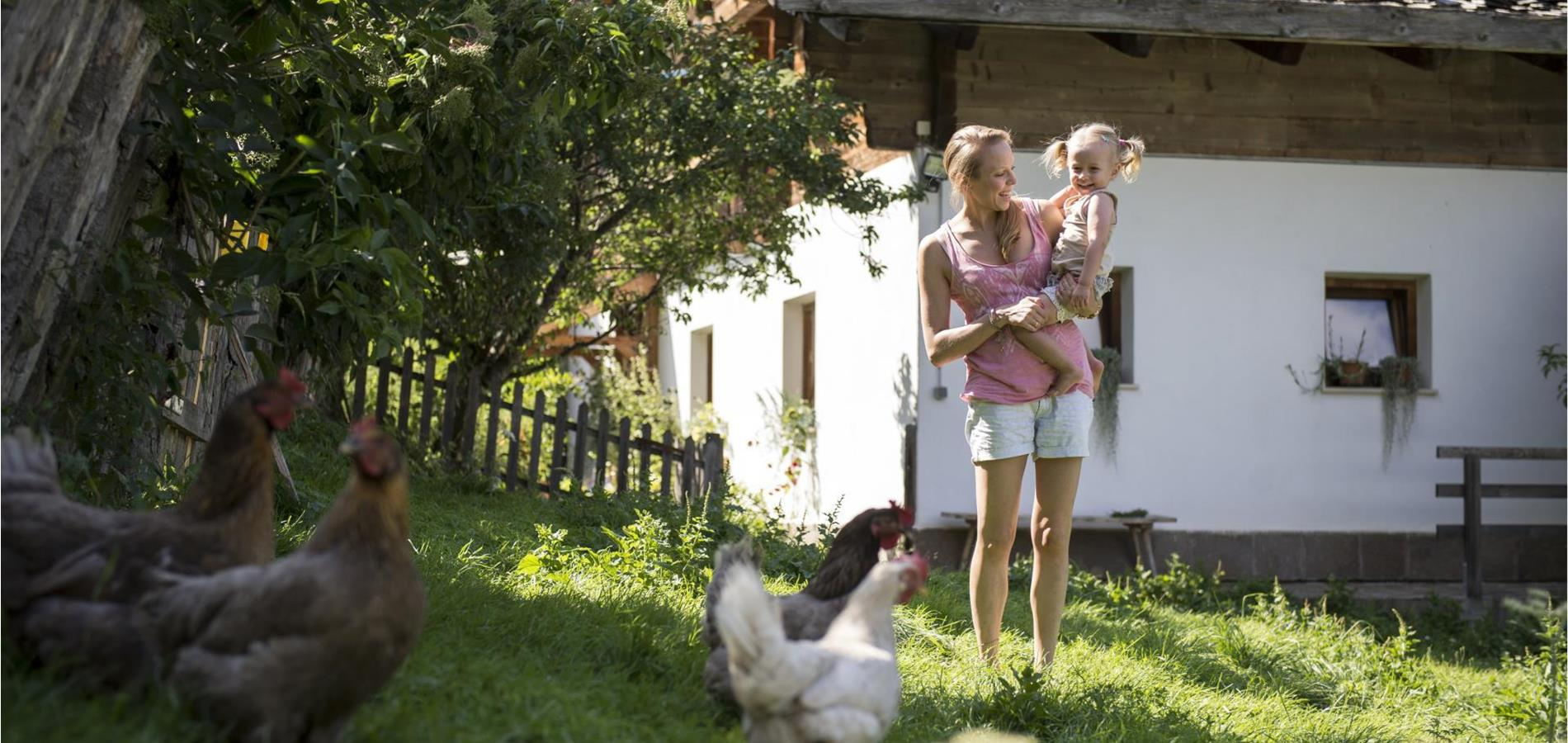 Farm Holidays in Lana and environs