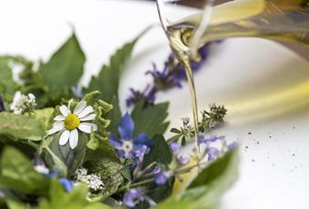Effective medicinal herbs and healthy indulgence