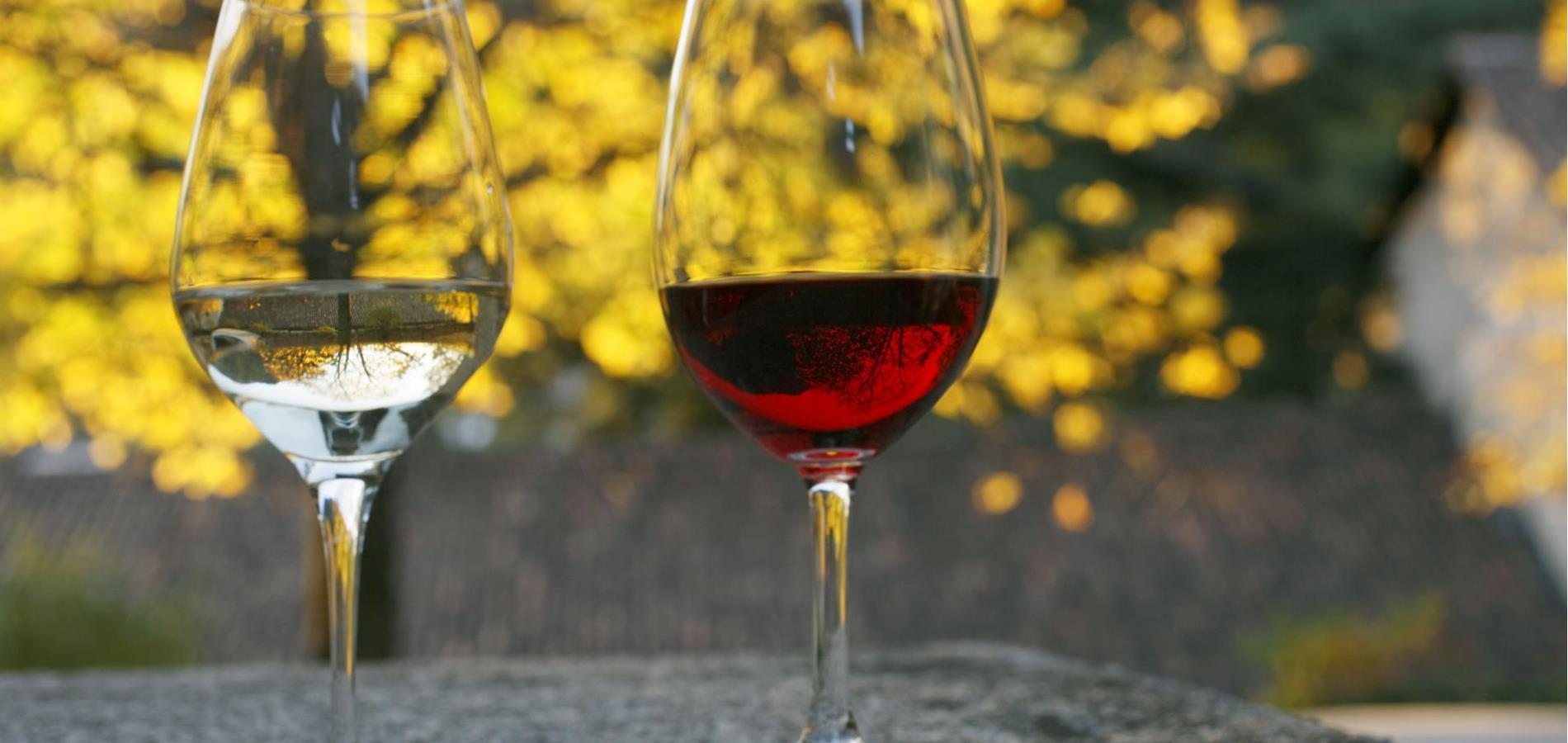 Wine from South Tyrol