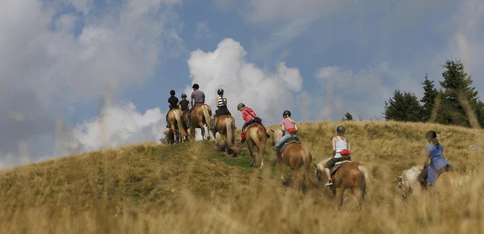 Horse-Riding-Riding-Excursion-with-Haflinger-horses-Avelengo-Verano-Merano2000-fb