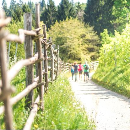 Hiking Trails in Lana and Surroundings near Merano