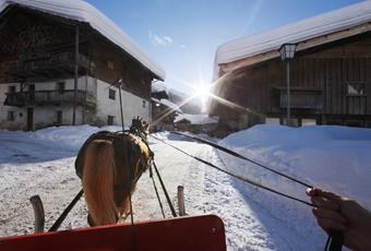 Horse-Drawn Carriage & Sleigh Rides