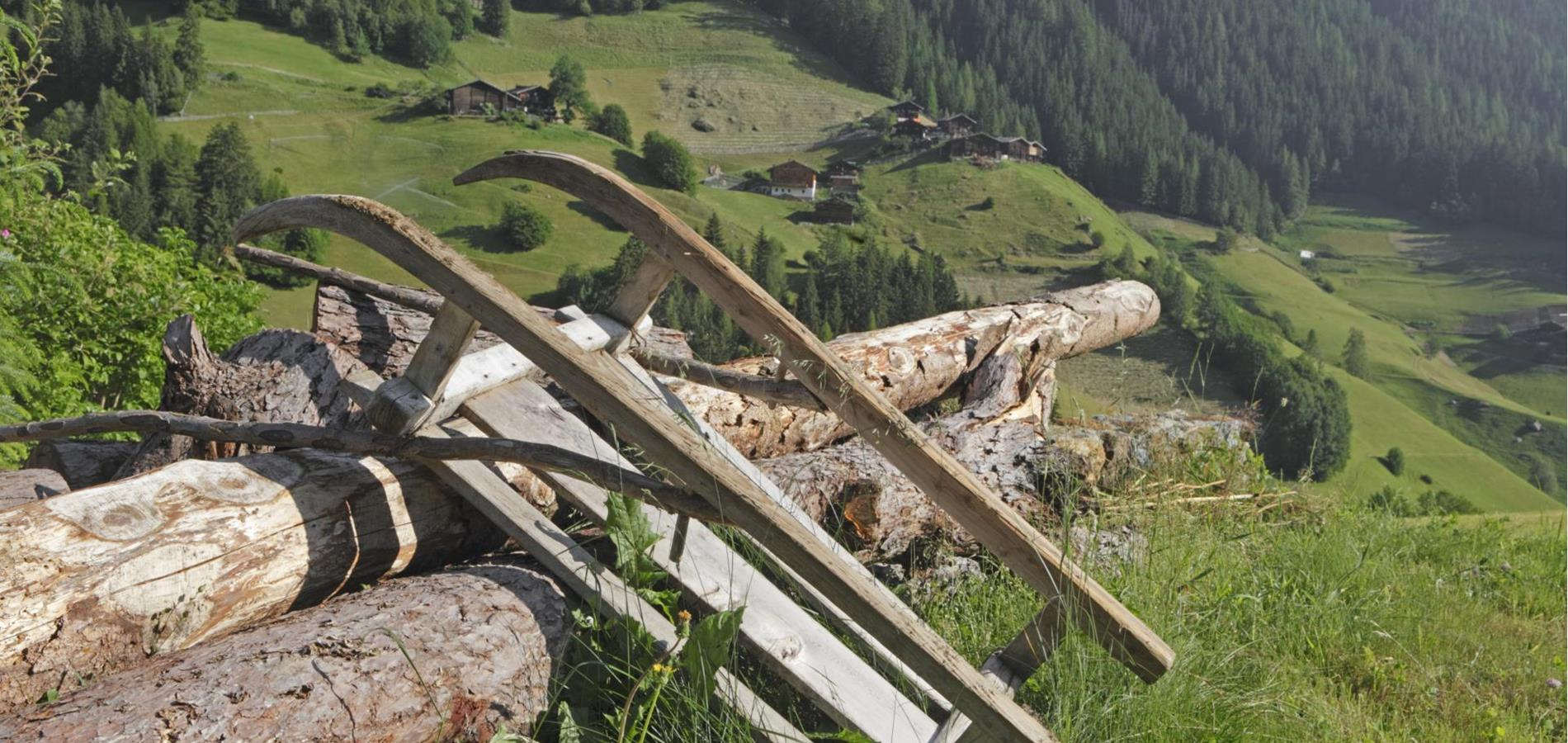 The Newsletter of the Ultental Valley
