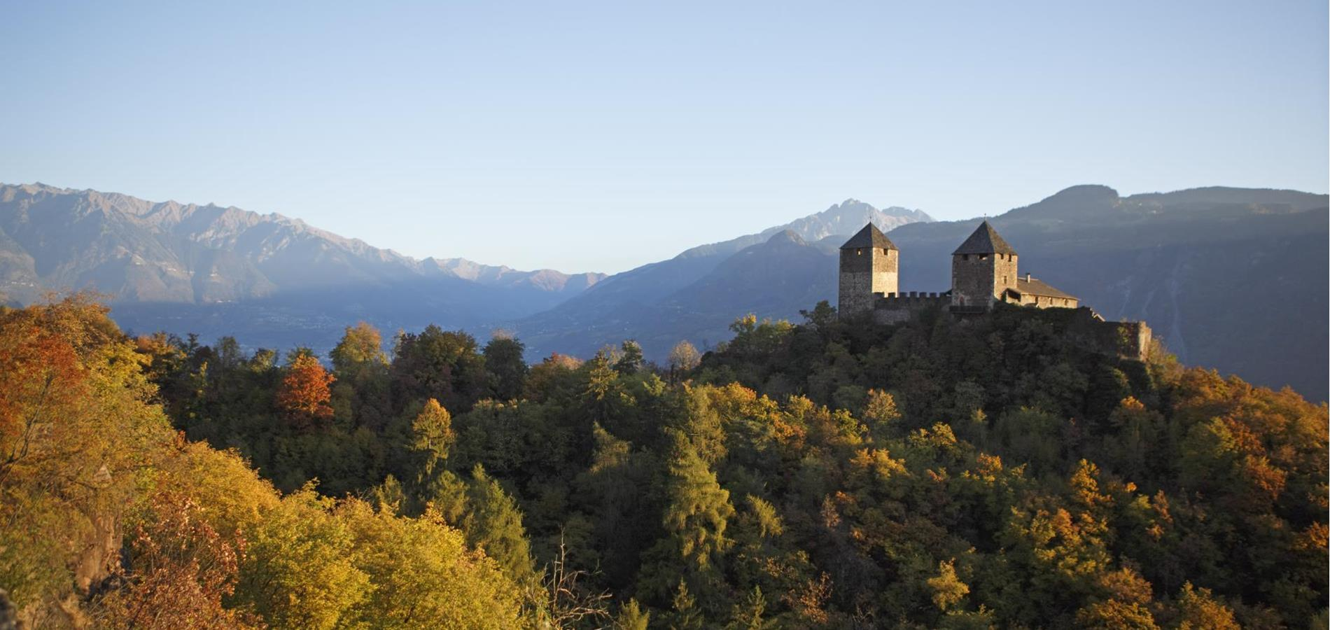 Holiday Offers in South Tyrol