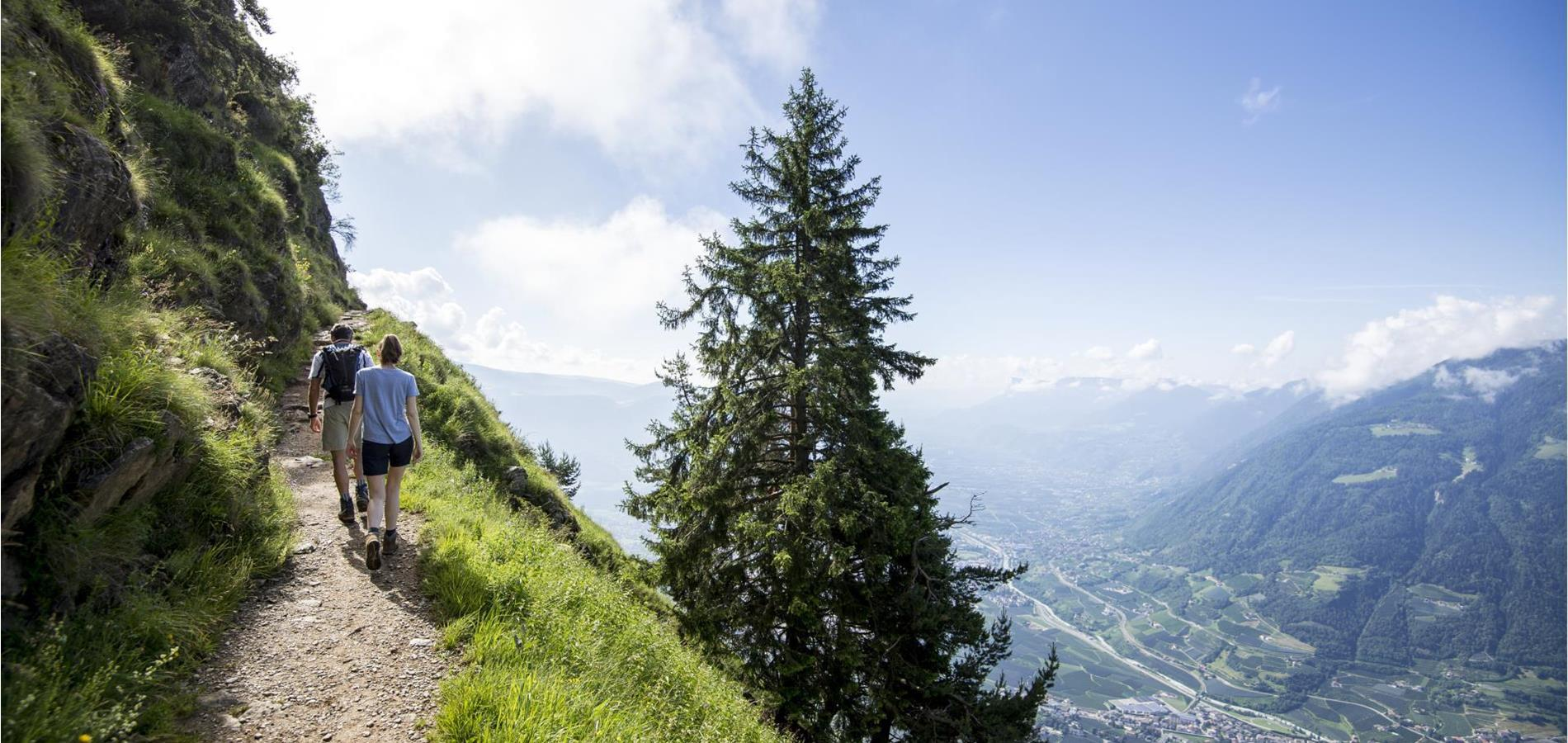 The Merano High Mountain Trail near Parcines