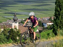 Weekly guided bike tours in Nalles