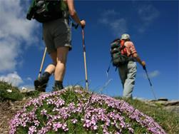 Nature Adventure Hiking in the Passeier Valley