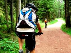 Guided mountainbike Tour (half day)