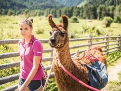 Lama trekking (children's summer)