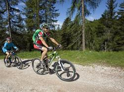 Mountain bike tour to the Wurzer Alm Mountain Hut