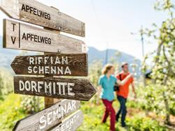 Hike from Dorf Tirol/Tirolo to Schenna/Scena