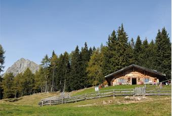 Moschwaldalm Mountain hut