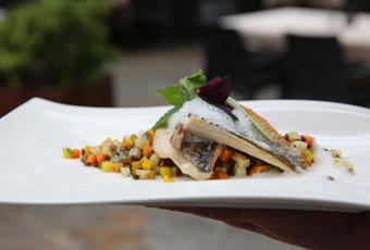 Thedl's Fillet of Speckled Trout