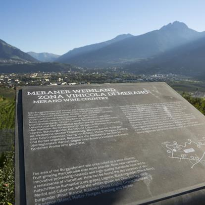The WineCulturePath offers an panoramic view through Merano